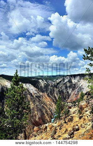 Landscape image shows the rapids of Yellowstone River and the far distant lower falls in Yellowstone National Park. Fluffy white cloudws and blue sky throw shadows over canyon.