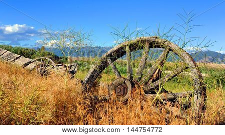 Abandoned and dilapidated wagon sits overgrown with weeds. Wagon sits in Paradise Valley Montana.