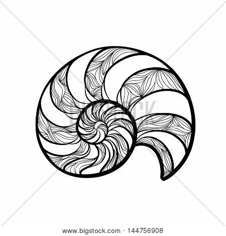 Seashell Nautilus. Sea Shell Set Ingraved Vector Illustration Isolated On White Background. Doodle S