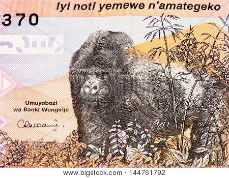 5000 Rwandan francs of Rwanda. Rwandan francs is the national currency of Rwanda