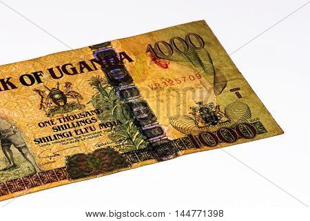 1000 Ugandan shillings bank note. Ugandan shilling is the national currency of Uganda