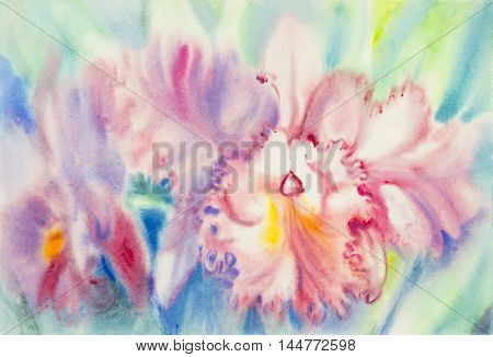 Abstract watercolor original painting pink color of orchid flower and green leaves in blue background