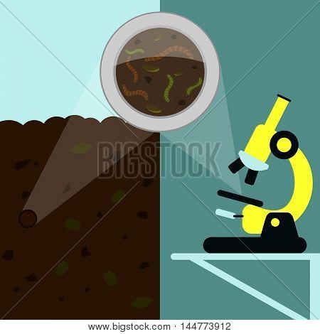 Earthworm Analysis