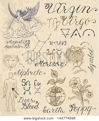 Collection of hand drawn symbols for astrological zodiac sign Virgo. Line art vector illustration of engraved horoscope set. Doodle drawing and sketch with calligraphic lettering