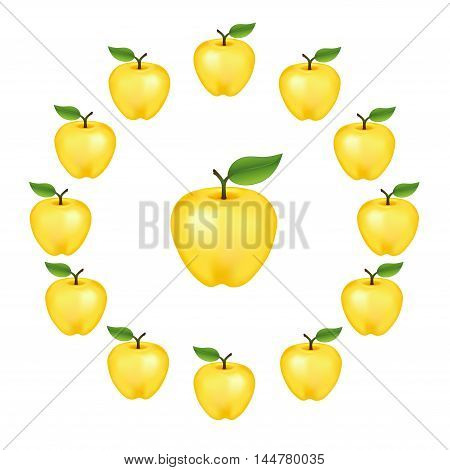 Apples in a wheel, Golden Delicious, fresh, natural, ripe, orchard garden fruit in a circle, isolated on a white background.