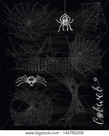 Gothic set with horror cobweb and scary spiders on black textured background. Doodle line art illustration and hand drawn graphic sketch, mystic and Halloween concept