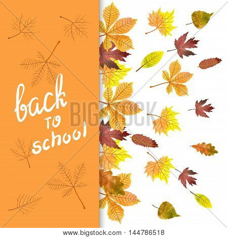 Autumn vector background with watercolor colorful leaves. Back to school poster design.
