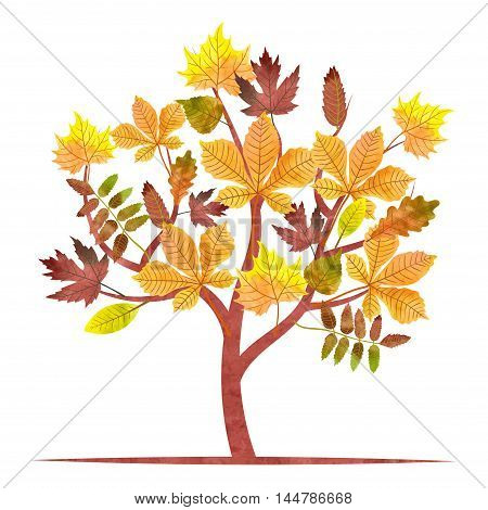 Abstract autumn tree with watercolor maple, oak, chestnut leaves. Vector fall illustration.