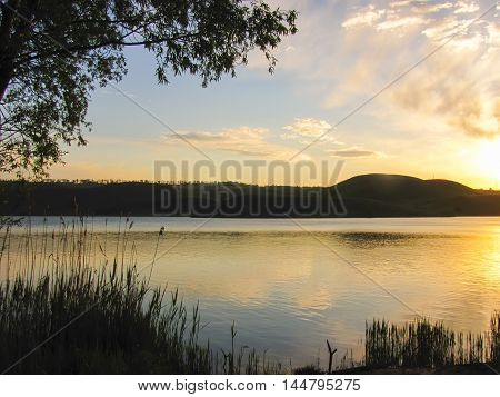 calm sunrise in the sea with trees and grass