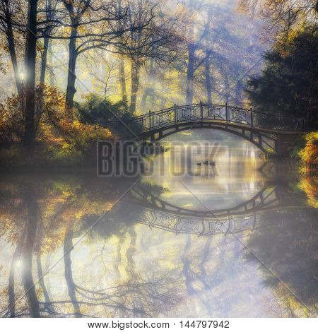 Beautiful romantic bridge in a park with colorful trees and sunlight and reflections in pond water autumn background