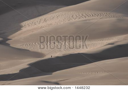 Man And Dog In Massive Sand Dunes