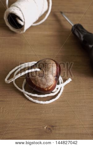 Making conkers a traditional children's game played using the seeds of Horse Chestnut trees.