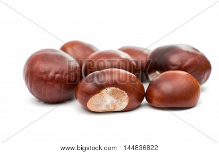 fruit chestnut cooking ingredient on a white background