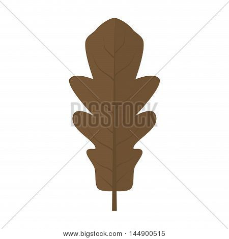 leaf natural autumn dry plant ecology sheet foliage enviroment vector illustration