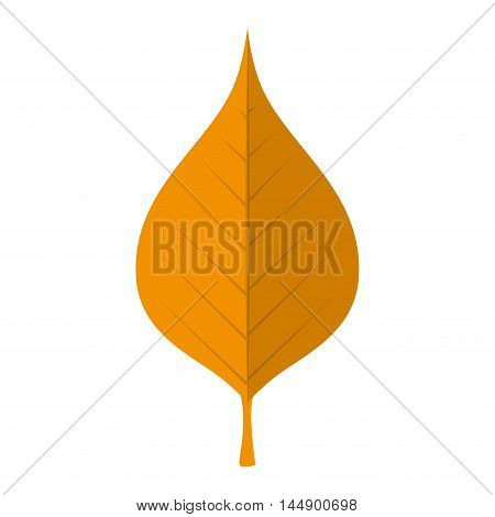 leaf natural autumn plant ecology sheet foliage enviroment vector illustration