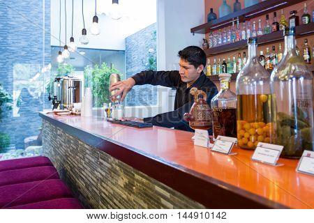 Bartender Preparing A Cocktail