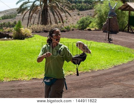 LA LAJITA FUERTEVENTURA SPAIN - SEPTEMBER 11 2015: Bird of Prey Show Oasis Park Fuerteventura Canary Island Spain