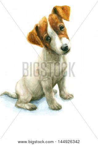 Watercolor Jack Russell Terrier puppy on white background