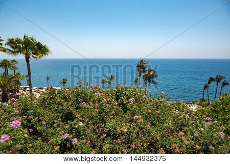 Vacation place sea side in Spain in summer