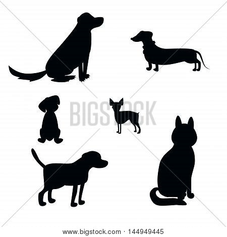 Vector dog breeds silhouettes collection isolated on white. Dog icons collection for cynology pet clinic and pet shop.