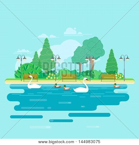 City park with green trees, street lamps and benches. Swans and ducks swim in the pond. Vector illustration in flat style.