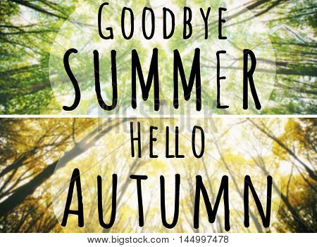 Hello Autumn, goodbye Summer