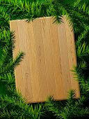 Blank wooden board against pine branches. Christmas template with christmas tree twigs. Qualitative vector layout for new years day, christmas, winter holiday, new years eve, silvester, etc poster