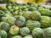 rotten watermelons bad smell,  HDR processing effect. poster
