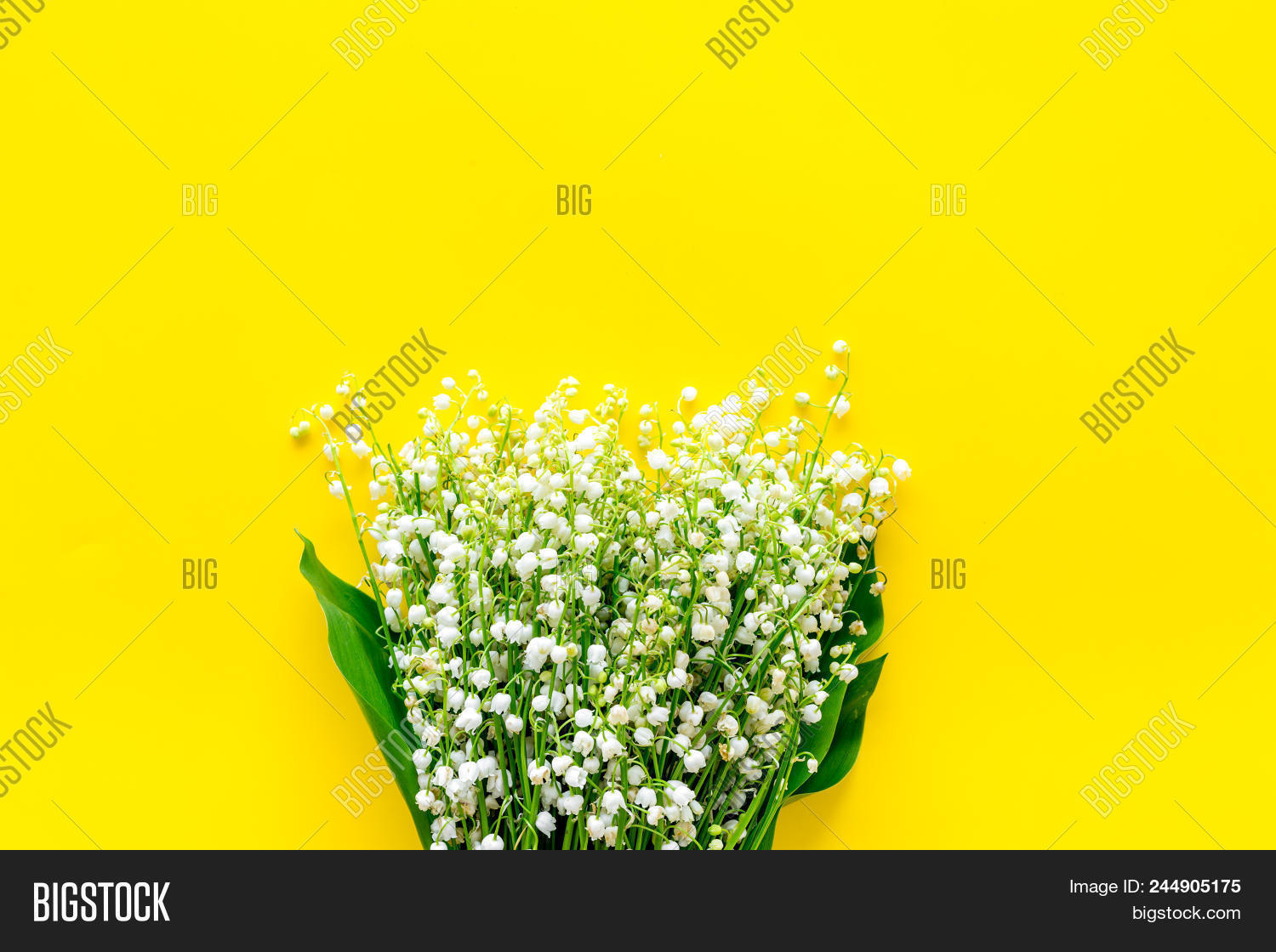 Small Fragrant Spring Image Photo Free Trial Bigstock