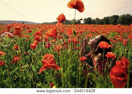 Drug, Opium, Narcotics. Woman Blow Bubble In Poppy Field, Dreams, Wishes. Summer, Spring, Poppy Flow