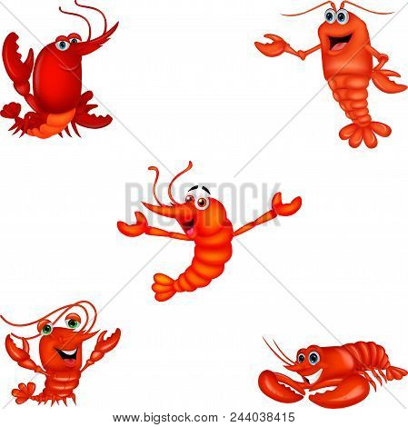 Cartoon Crustacean Collection Set Isolated On White Background