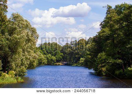 trees around the pond on the island