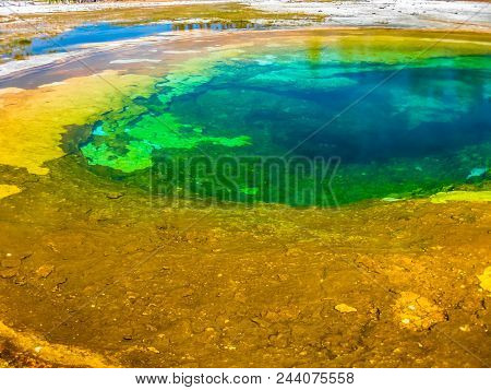 Closeup Of Morning Glory Pool, A Hot Spring In The Upper Geyser Basin In Yellowstone National Park,