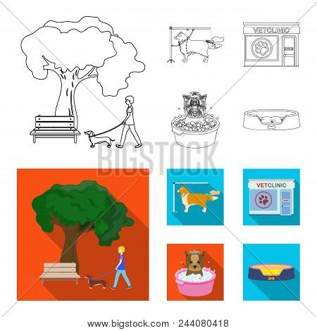 Pet Cartoon Icons In Set Collection For Design. Care And Education Vector Symbol Stock Illustration.