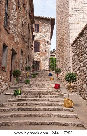 Uphill Steps With Buxus Plants Pots Along A Path In A Street Of Corciano City