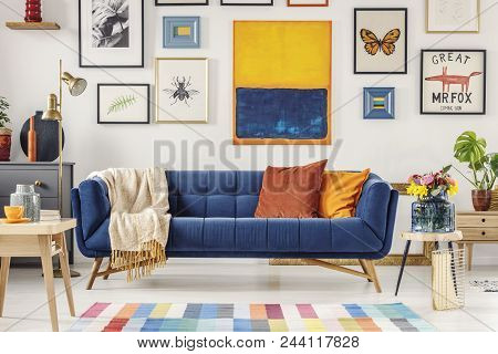 Navy Blue Couch With Bright Blanket And Two Cushions Standing In White Living Room Interior With Fre