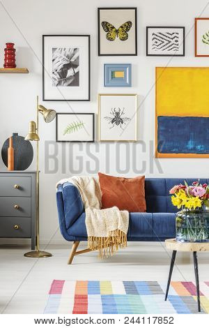 Blanket And Pillow Placed On Navy Blue Couch Standing In White Living Room Interior With Many Poster