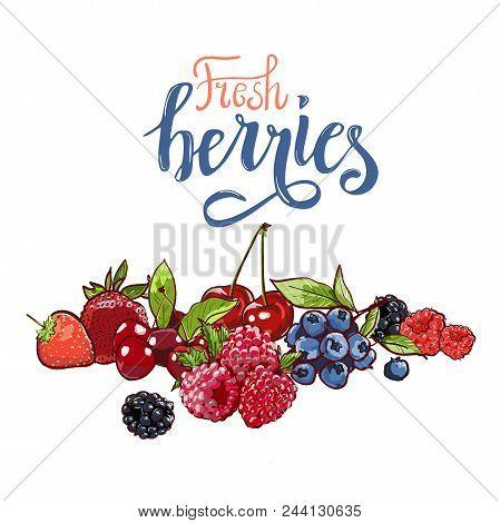 Hand Drawn Vector Set Letterig Summer Berry Colorful Marker Illustration. Berries Engraving Doodle S