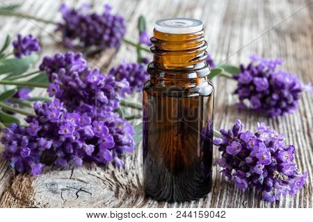 A Bottle Of Essential Oil With Fresh Blooming Lavender