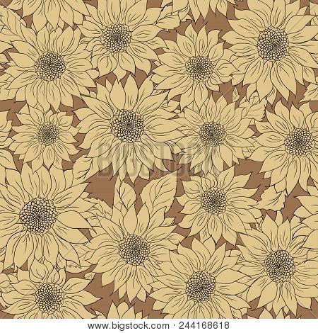 Hand Drawn Pattern Of Sunflowers Background. Flower Sunflower Beige And Brown. Packaging, Oil Produc