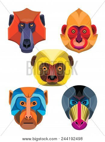 Flat Icon Mascot Style Illustration Of Heads Of Old World Monkeys Like The Baboon,  White-headed, Go