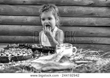 Kid Enjoing His Meal. Cute Little Boy In White Pinafore Eats Berries Raspberry Gooseberry Cherry Cur