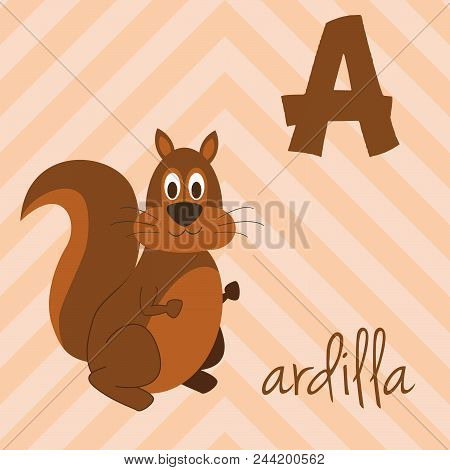 Cute Cartoon Zoo Illustrated Alphabet With Funny Animals. Spanish Alphabet: A For Ardilla. Learn To