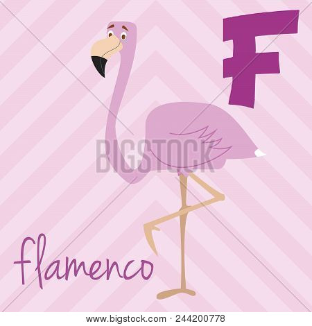 Cute Cartoon Zoo Illustrated Alphabet With Funny Animals. Spanish Alphabet: F For Flameno. Learn To