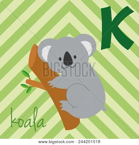 Cute Cartoon Zoo Illustrated Alphabet With Funny Animals. Spanish Alphabet: K For Koala. Learn To Re