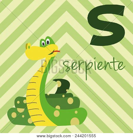 Cute Cartoon Zoo Illustrated Alphabet With Funny Animals. Spanish Alphabet: S For Serpiente. Learn T