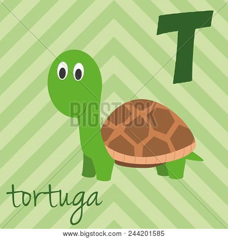 Cute Cartoon Zoo Illustrated Alphabet With Funny Animals. Spanish Alphabet: T For Tortuga. Learn To