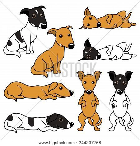 Cartoon Puppy Vector Illustration Set. Two Variants Of The Doggy, Beige One And White And Black Spot
