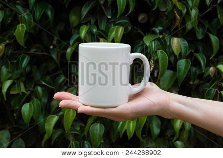 Young Caucasian Woman Holding In Hand White Mockup Mug On Green Tree Foliage Nature Background In Fo