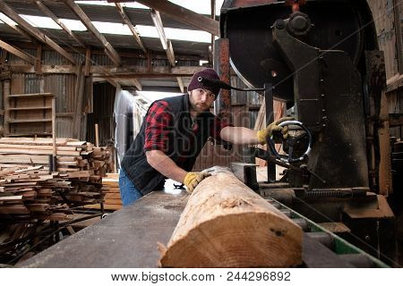 Good Looking Man In Chequered Shirt Pushes Log Through Band Saw In Wood, Saw Mill